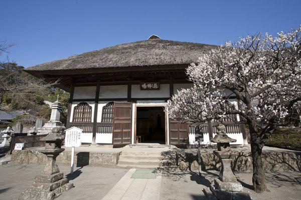 仏殿の左手にある選仏場。元禄時代の1699年に建てられた茅葺き屋根の風情ある建物。南北朝時代に造られた薬師如来像を安置しています。