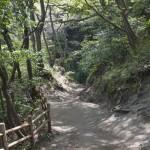 登りきると、源氏山に至ります。
