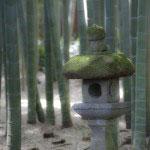 静かな浄明寺の地にある報国寺は、竹の庭で有名。
