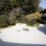 開山、仏乗禅師の作による中庭。竹の庭を見た後に訪れます。