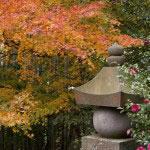 この塚の辺りは紅葉の見所でもあります。