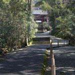 妙本寺の参道。鎌倉駅から日朝様(本覚寺)を抜けて夷堂橋を渡ると妙本寺門前の雰囲気が出てきます。祖師堂へと続くこの参道の雰囲気が心を落ち着けてくれます。
