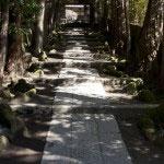塔頭寺院、正統院へと至る参道。静寂な空気にひかれます。