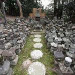 杉本寺の上にはかつて杉本城がありました。南朝の北畠顕家に攻められ自害した斯波家長とその家臣たちの供養塔です。