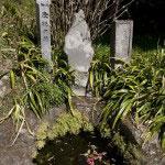 門前にある底脱の井。安達泰盛の娘がここで水を汲むと桶の底が抜けました。ここから悟りを得たため、この名となりました。井戸の底ではなく、心の底が抜けて悟りが開けたというありがたい井戸です。