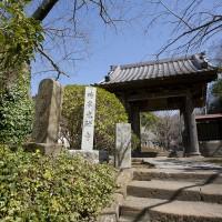 鎌倉の奥座敷という雰囲気の静かな十二所にあります。