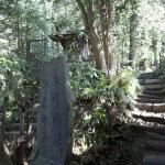 ここで道が分かれます。右手が祇園山ハイキングコースです。