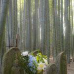 竹の庭。よく情報誌に出てくる仏像があります。