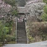 山門へと続く階段。かつて、多くの女性たちが決死の覚悟で登ったのでしょう。