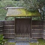 説明されなくとも、なんとなく日本の様式美とか仏の寂静を我々日本人に本能的に感じさせてくれるのがお寺さんの魅力なのでしょう。
