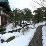 神苑牡丹園。受付を済ませ、中に入ります。温暖な鎌倉は降雪に弱い町ですが、ここは雪と寒牡丹をみようと見物客で賑わいます。