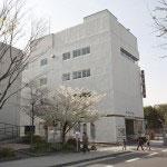 白い建物が鎌倉彫会館です。桜と鎌倉彫会館の間を入っていきます。