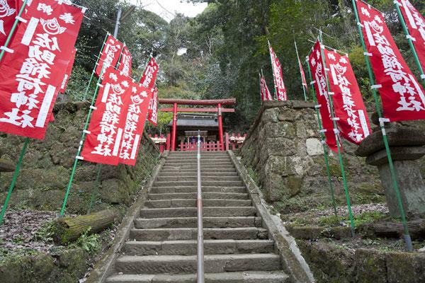本殿へとさらに登ります。