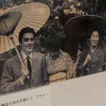 川喜多邸の桜の下を歩くアラン・ドロン。やっぱりいい男です。