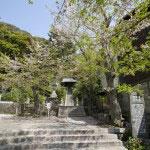 源頼義がこの神社を参拝して義家を得たといういいつたえが残る鎌倉最古の神社、甘縄神明神社。右手に石碑が見えています。