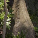 義家の石碑。