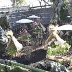 鶴岡八幡宮境内にある神苑牡丹園。古来より奇石として珍重されたという中国蘇州の太湖石をそなえた古典庭園である湖石の庭。