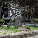 光明寺、鎌倉アカデミアの石碑。社務所の右手あたりにあります。