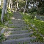 平場を越えて鳥居をくぐり、急勾配の階段を登ります。