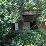 川端康成の『千羽鶴』に描かれた茶室、煙足軒です。佛日庵の中にあります。茶室手間には大佛次郎夫人により寄贈された枝垂桜があります。