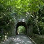 鎌倉の中でも好きな景色のひとつ。鎌倉文学館の招鶴洞。