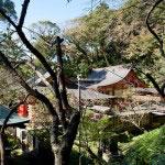 荏柄天神社。中世から残る本殿が奥に見えます。