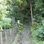 東勝寺橋から登って行くと左側に大きな空き地(東勝寺跡)があり、その奥にあります。