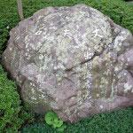 丈夫石。横綱双葉山の時津風定次親方、横綱常の花の出羽海秀光親方の名があります。