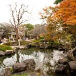 山門をくぐると池と紅葉の美しい景色です。