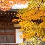 日本建築は新しくともきれいです。無粋な現代洋風(?)建築はなくして、町全体がすべて日本建築になれば最高です。観光集客力アップ策ということで市で補助金でも出したらどうでしょう。