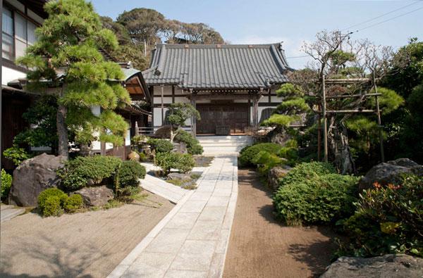 植木がきれいに整えられた東漸寺境内。