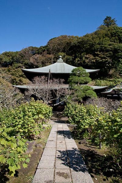 瑞泉寺本堂。紅葉ヶ谷と瑞泉寺の絶妙な風情がたまりません。