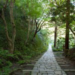 長い参道は静けさをたたえます。