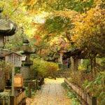 日蓮が安国論寺を著した岩窟がある安国論寺。
