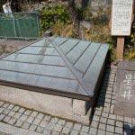 事の発端となった星ノ井は、お堂へと至る階段の下にあります。