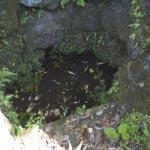 まだ井戸は枯れておらず、水面が見えます。