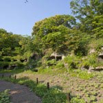 まんだら堂やぐら群。中世のやぐらが無数に集まります。火葬や墓所として使用されていました。平成13、14年度の逗子市による発掘調査により鎌倉時代の後半、13世紀末頃から平場の造成とやぐらの掘削が行われ、室町時代中期まで供養などが行われていたことがわかっています。現在は閉鎖されており時期により臨時公開されます。