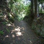 法性寺から登る道。