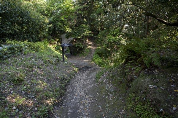 さらに少し離れて。右手が小坪方面への出口。中央の登り口は高台になっています。