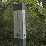 大切岸からハイランド方面へと進むと、子供自然ふれあいの森、パノラマ台があります。