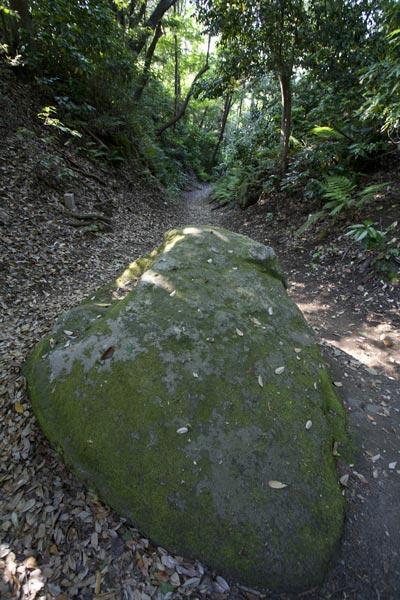 道の巨石。