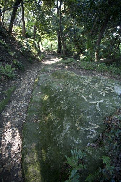 日蓮聖人が松葉ヶ谷法の草庵を焼き討ちされた際、鎌倉の松葉ヶ谷(現在の鎌倉市大町、安国論寺付近)から法性寺(現在の逗子市久木)まで避難したそうです。それが石に書かれています。
