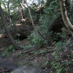 天園ハイキングコース瑞泉寺〜獅子舞上合流地点間。瑞泉寺口から500m程きたところにやぐらがいくつかあります。