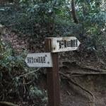 〔地図8〕天園ハイキングコース瑞泉寺〜獅子舞上合流地点間。獅子舞方面との分岐点。