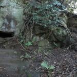 天園ハイキングコース瑞泉寺〜獅子舞上合流地点間。またやぐらがあります。