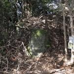 天園ハイキングコース瑞泉寺〜獅子舞上合流地点間にある大亀石。みえているのは亀の頭部分。