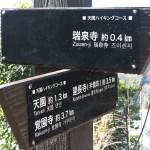 天園ハイキングコース瑞泉寺〜獅子舞上合流地点間。瑞泉寺口から400mきたところです。
