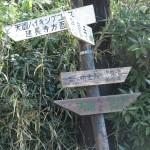 天園ハイキングコース瑞泉寺〜獅子舞上合流地点間。瑞泉寺口から400mきたところです。ここで天園方面と明王院方面に分岐します。
