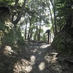 天園ハイキングコース瑞泉寺〜獅子舞上合流地点間。瑞泉寺口から300m程進むと看板がみえてきます。