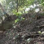 天園ハイキングコース瑞泉寺〜獅子舞上合流地点間にある大亀石。側面はまさに亀のようです。
